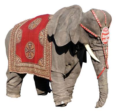 BARON ELEPHANT