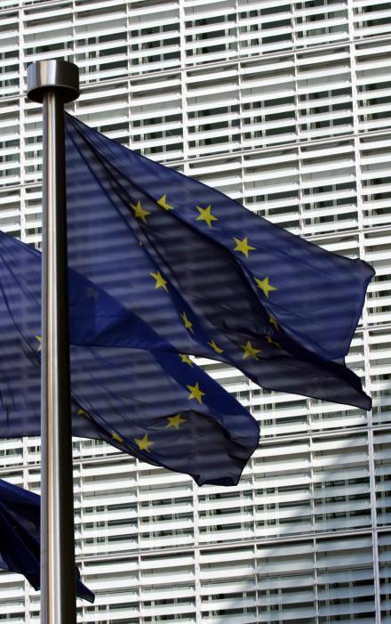 European Parliament Building Flags