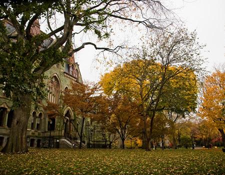 QS World University Rankings, Global Giants