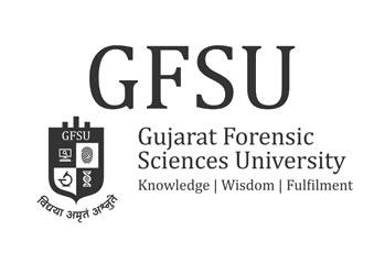 Gujarat, University