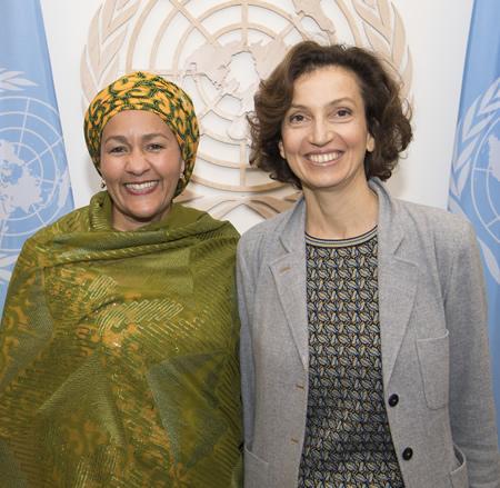 UNESCO, United Nations, Universities