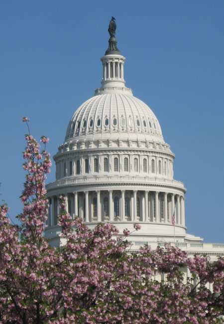 Washington, Capitol Building